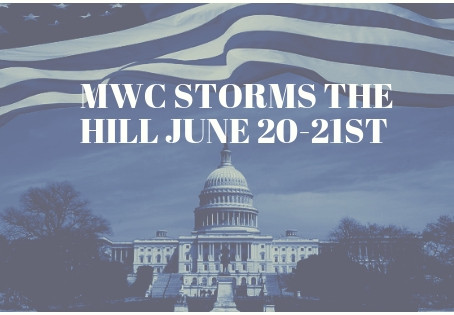 Steering Committee Storms The Hill June 20th and 21st