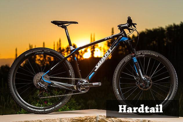 hardtail.jpg