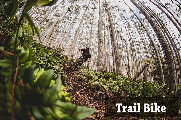 Trail Bike.jpg