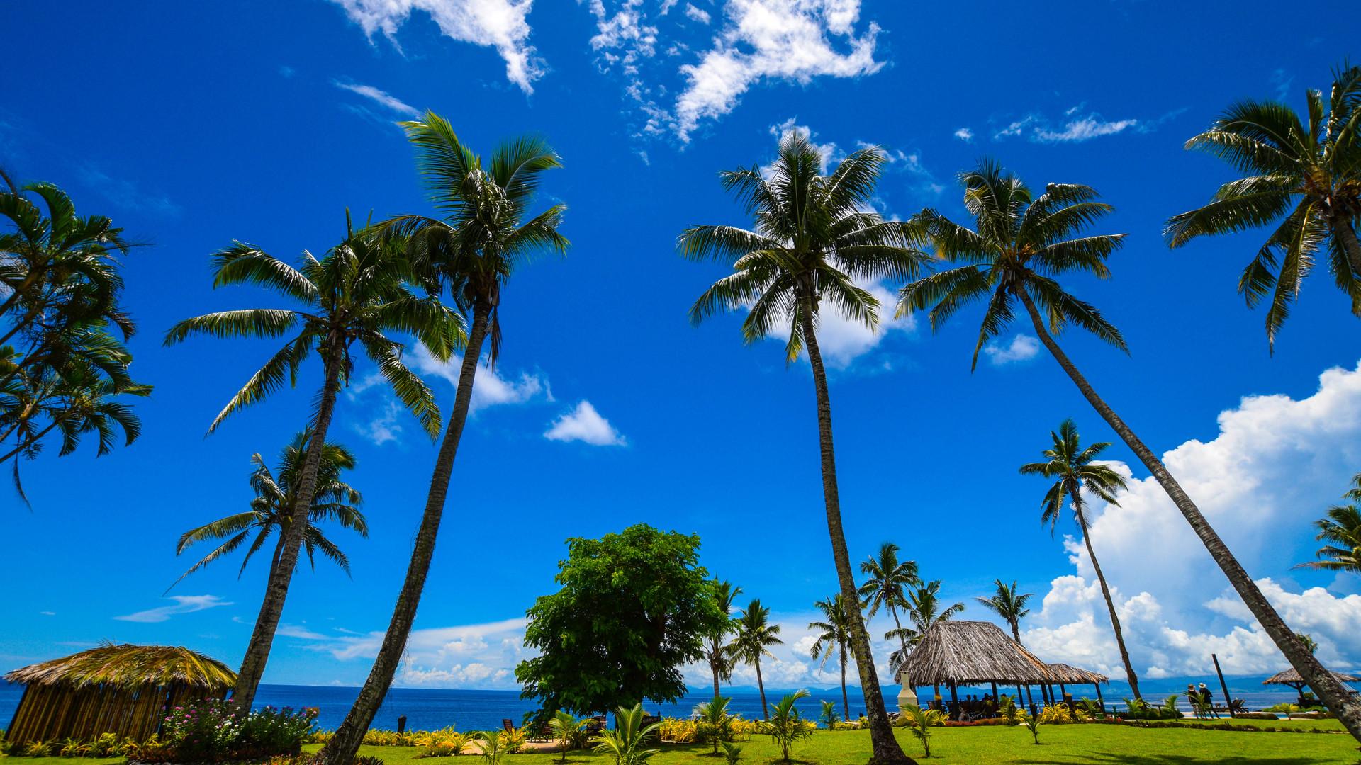 Paradise_Taveuni-Garten