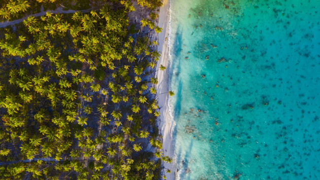 Exotisches Tahiti