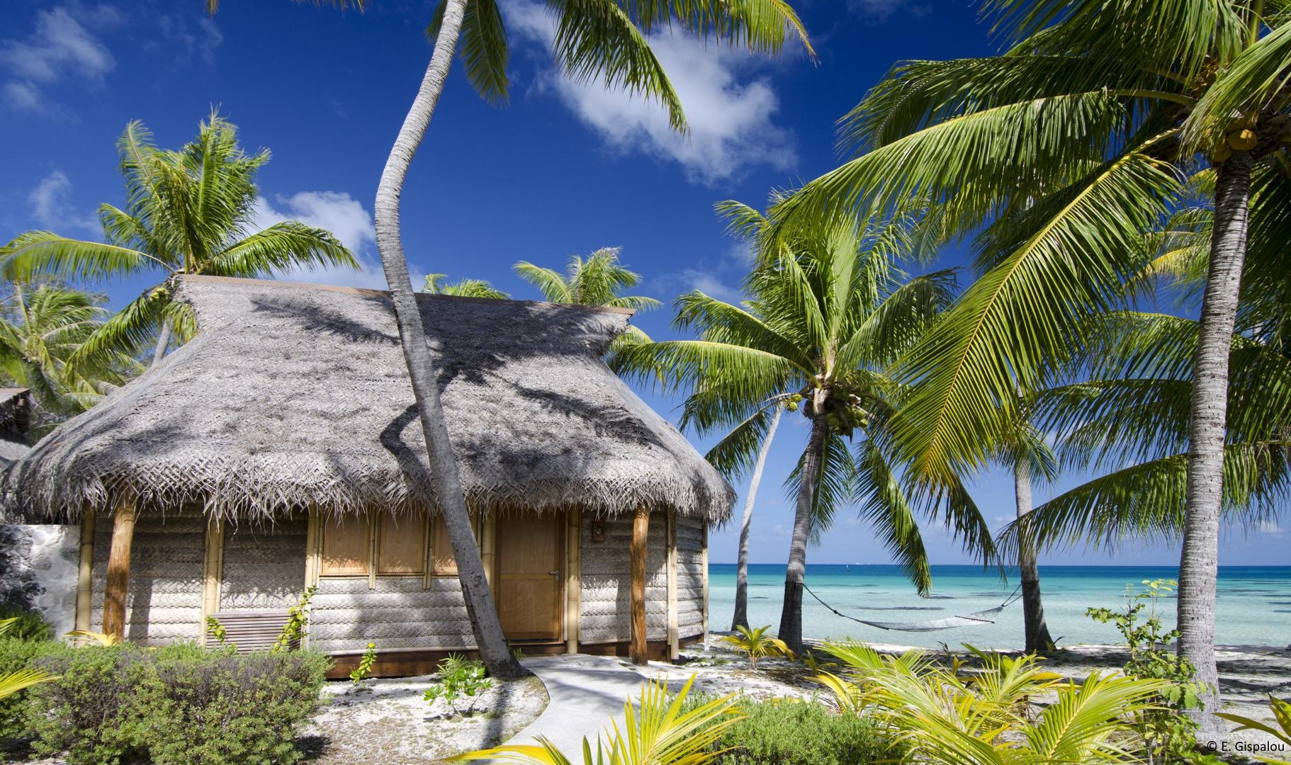 tikehau-tikehau_pearl_beach_resort_Bungalow