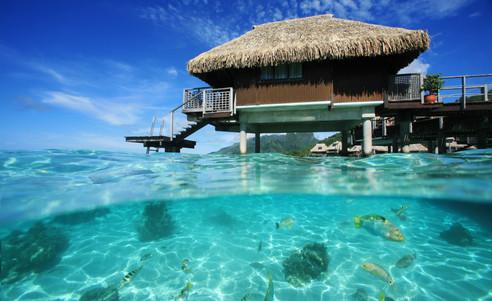Hilton_Moorea_Lagoon_Resort-Overwater_Bungalow