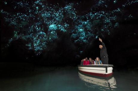 Waitomo Höhlen / Glühwürmchen