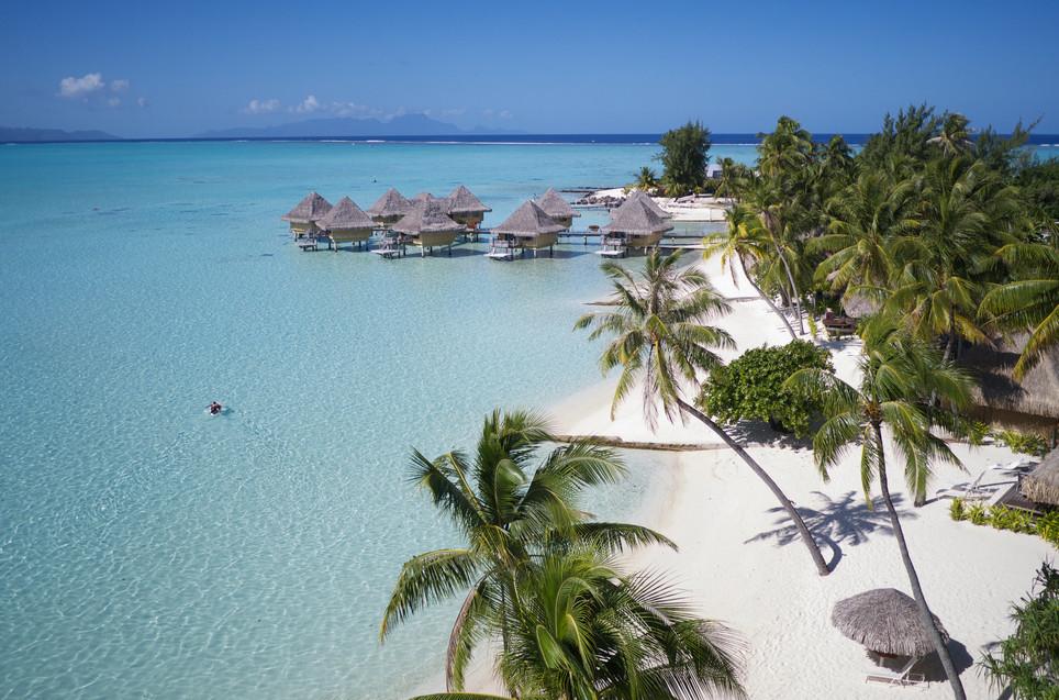 InterContinental_Bora_Bora_Le_Moana_Resort-Strand-Kokospalmen