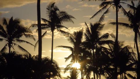 Fiji Inselhüpfen Deluxe