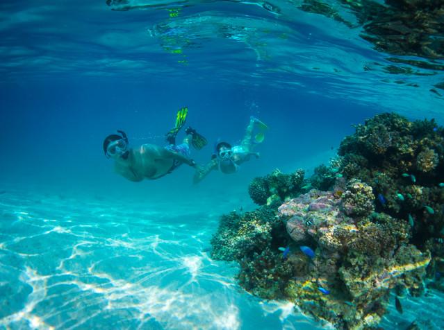 Cook Inseln - Unterwasserwelt