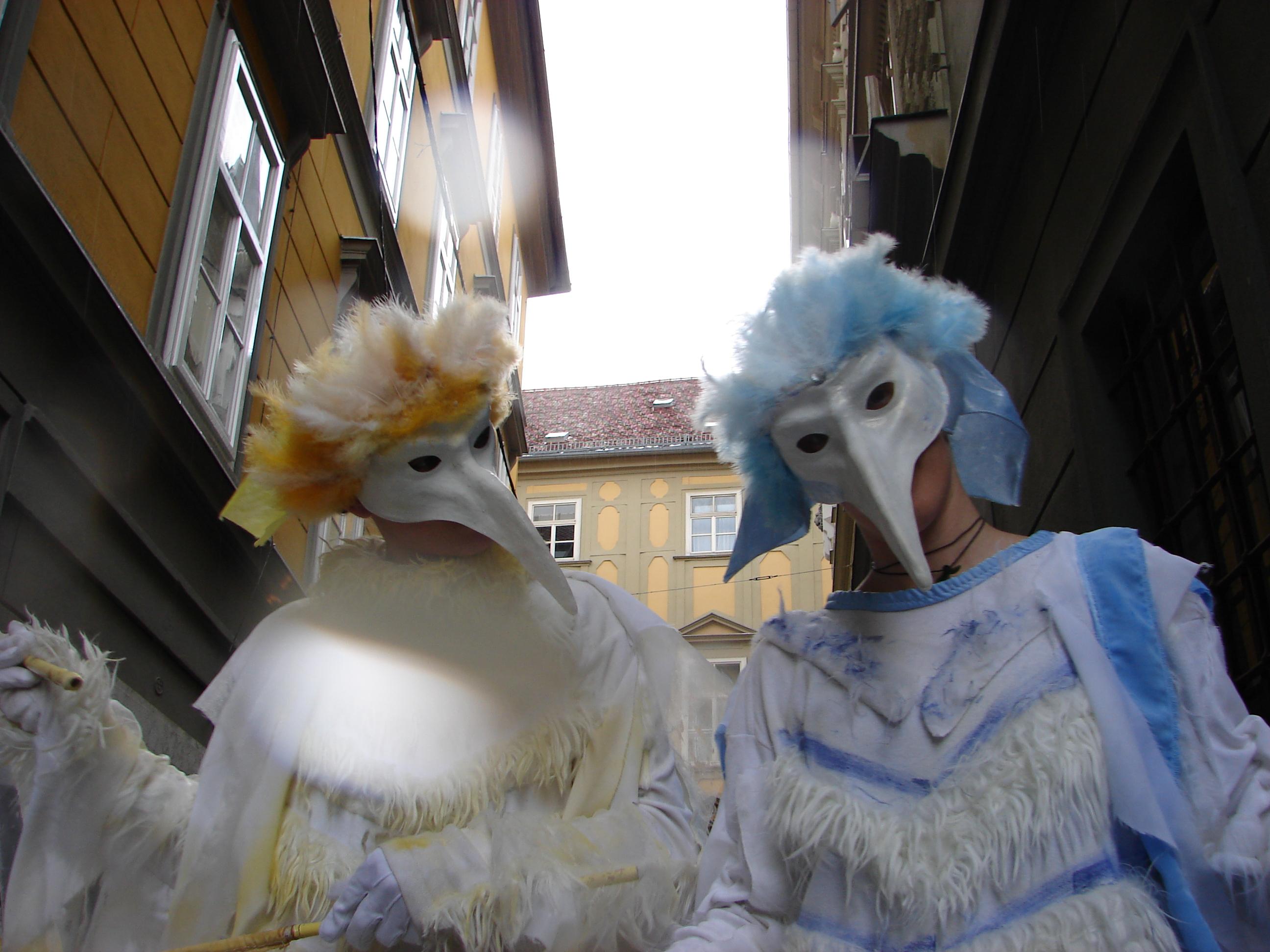 Eisvögel 12.png
