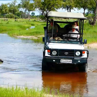 Safaridrive
