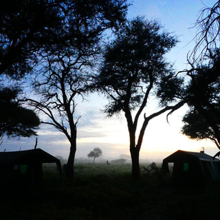 Camp in the early morning.
