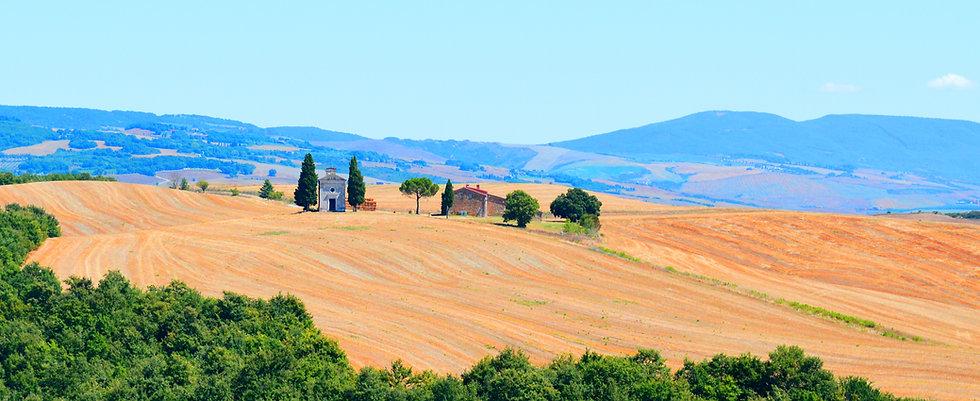 tuscana.jpg
