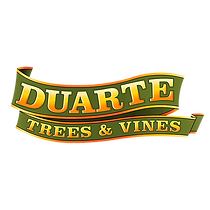 Duarte-Trees-and-Vines_logo-small.png
