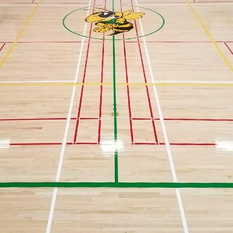 Raphael Gallery Edit for Sports Floor-20