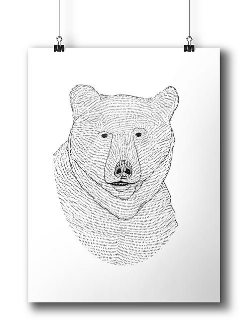 Bear Circle  - A4
