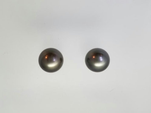 Platinum & Black South Sea Pearl Earring Studs