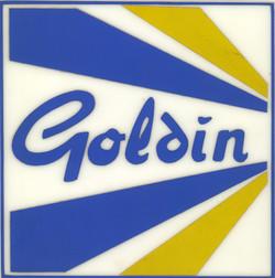 goldin.jpg