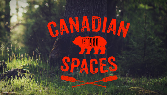 A retrospective of Ian Tamblyn's 44 albums on Canadian Spaces with Chris White
