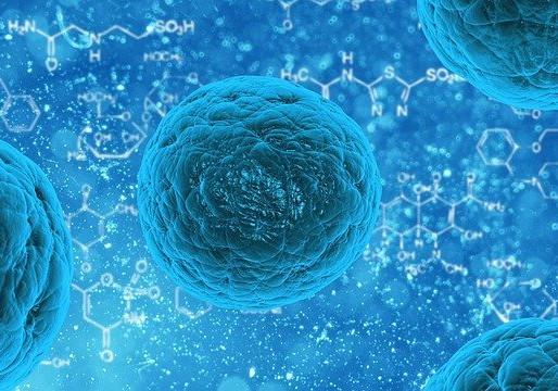 Bioterrorismo: la docena sucia