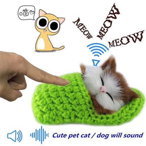 חתול צעצוע
