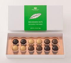 12P Macadamia.jpg
