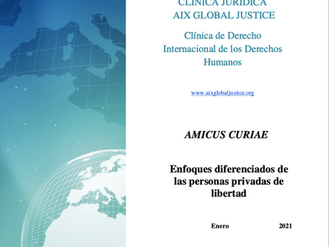 New submission of an Amicus Curiae to the Inter-American HR Court