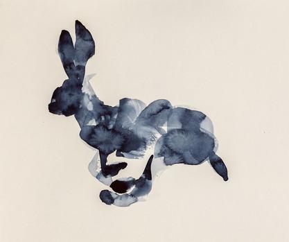 Running Rabbit, Watercolor on Paper