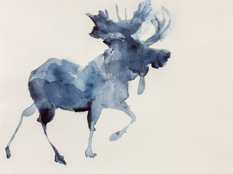 Moose, Indigo Watercolor on Paper