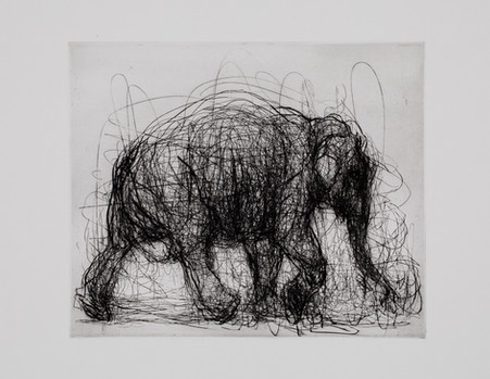 Elephant, Drypoint and Etching
