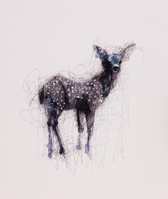 Fawn, Mixed Media on Paper