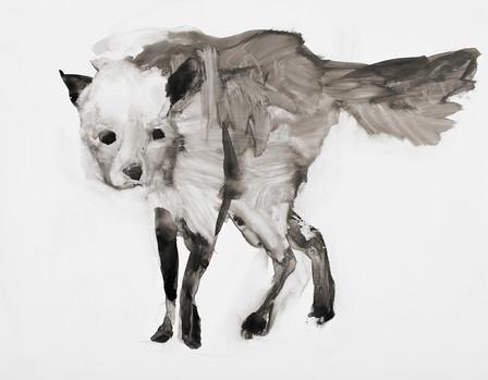 Fox, Ink on Vellum