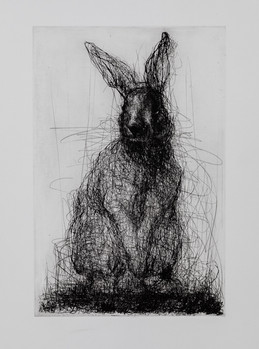 Rabbit, Drypoint and Etching