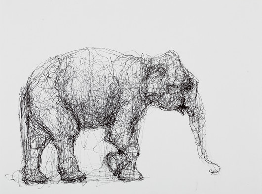 Elephant, Ink on Paper
