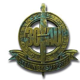 30AU_badge.jpg