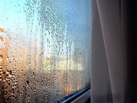 Condensation-window1.jpg