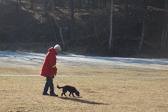 Personspår, grund. ALLA hundar kan spåra! Lördagar 3ggr. Björkhagen