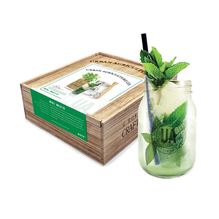 Urban Agriculture Mint Mojito cocktail kit