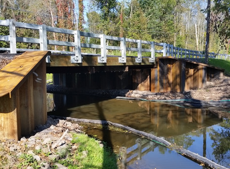 Wayne County's Macedon Center Road Bridge wins APWA Project of the Year Award