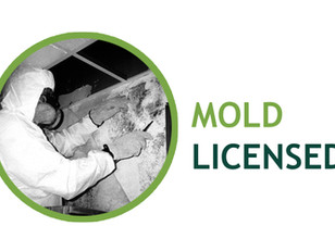 LaBella Receives New York State Mold Licensing