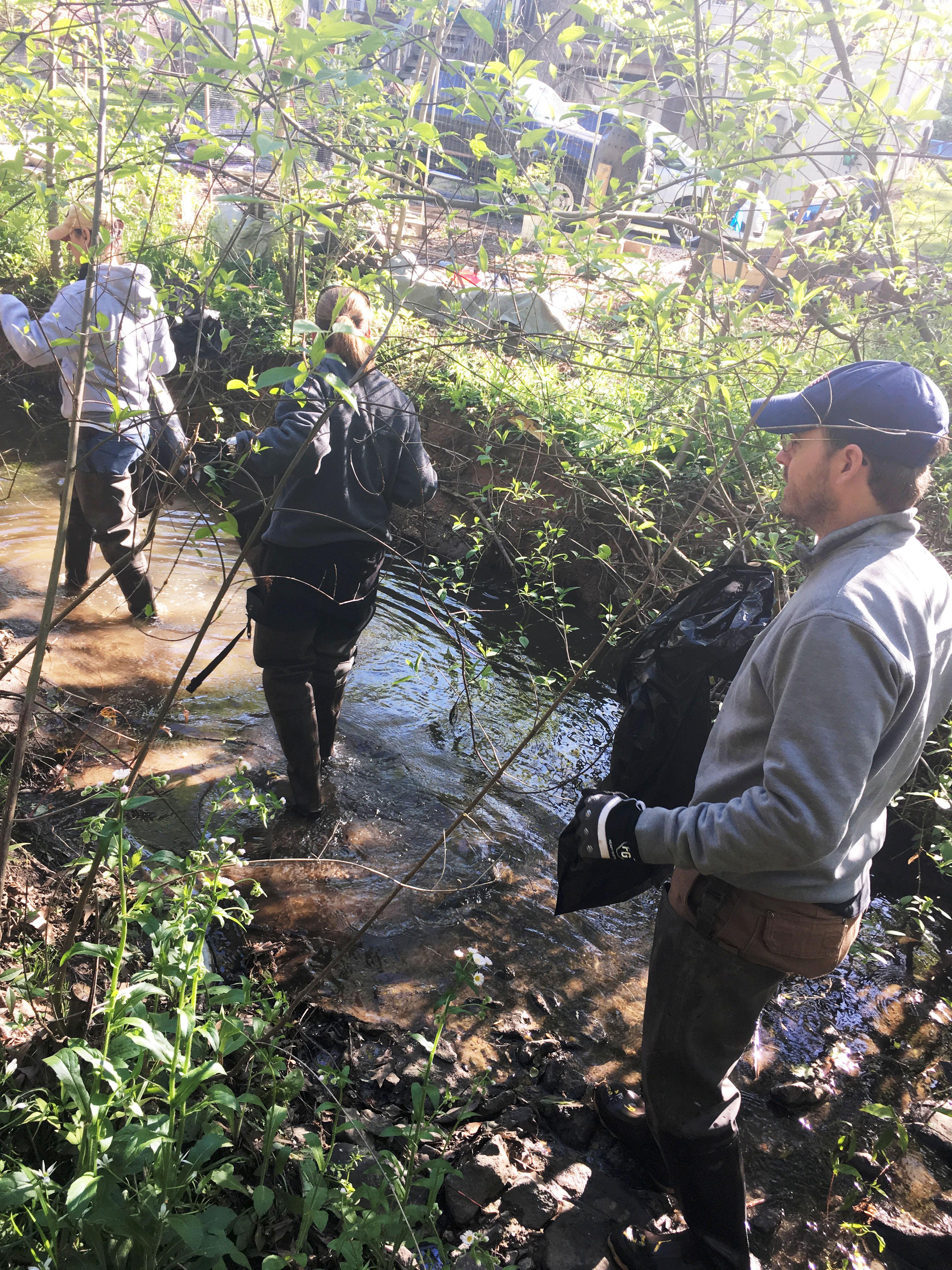 Charlotte-Mecklenburg Adopt A Stream