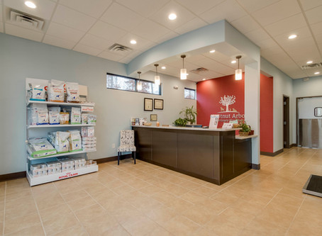 Nothing to Fear: Chestnut Arbor Veterinary Clinic