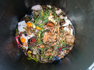 Organics and the China Ban on Recyclables - As featured in Solid Waste & Recycling Magazine