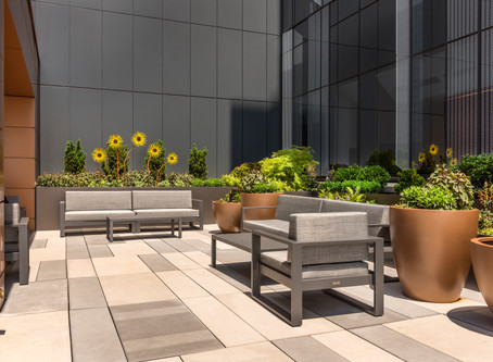 A Rooftop Park for Roswell Park
