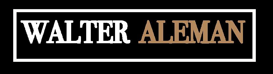 WEBSITE my logo watermark helvetica copy