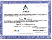 CoComp-certifikatIM.png