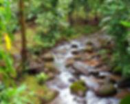 costa-rica-tortuguero-national-park.jpg