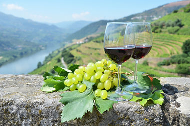 Wine glasses against vineyards in Douro