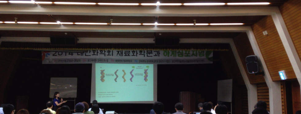 Korean Chemical Society, Division of Material Chemistry, 2013