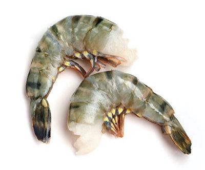 Babbar Jhinga( Tiger Prawn/Shrimp)( Jambo)