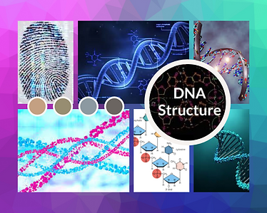 DNA Collage.png