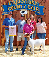 freestone county youth expo.jpg